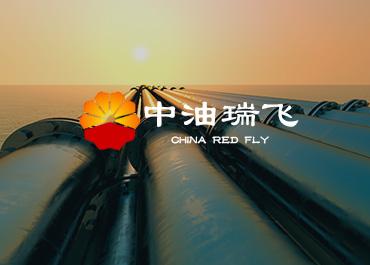 中油瑞飞能源行业网站案例赏析