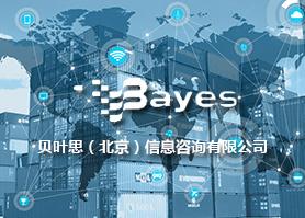 贝叶思北京信息咨询网站案例欣赏