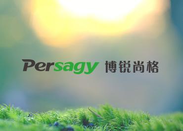 博锐尚格能源网站案例欣赏
