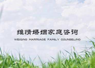 维情婚姻家庭咨询网站案例欣赏