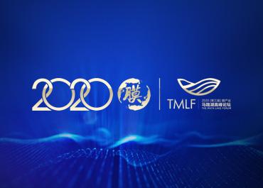 2020中国膜产业发展峰会网站建设案例欣赏