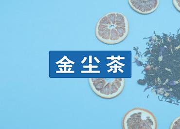 北京金尘集团官网制作案例赏析