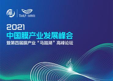 2021中国膜产业发展峰会网站制作开发案例